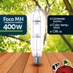 Imagen de Foco Halogenuro (MH) 400W