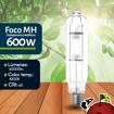 Imagen de Foco Halogenuro (MH) 600W