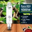Imagen de Foco Halogenuro (MH) 1000W