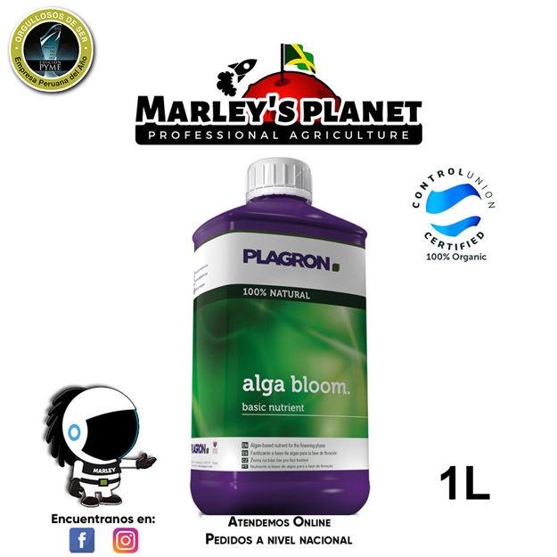 Imagen de Alga Bloom 1L