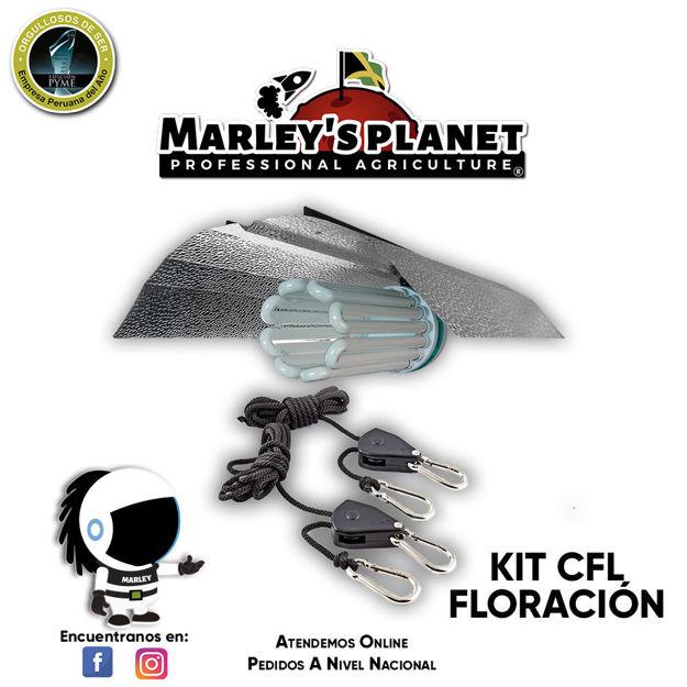 Imagen de KIT CFL 300w FLORACIÓN