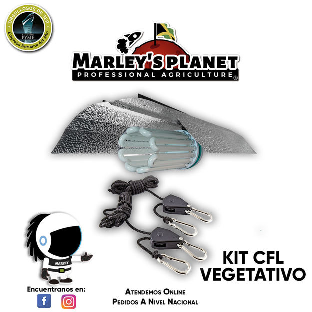 Imagen de KIT CFL 300w VEGETATIVO
