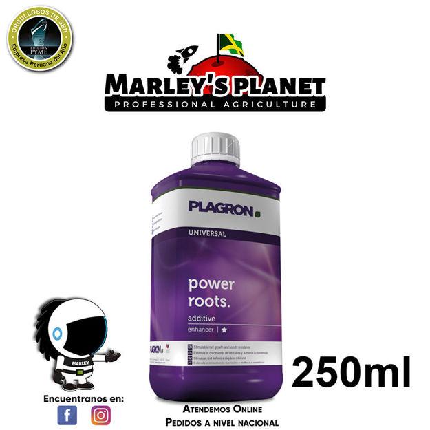 Imagen de Power roots 250ml