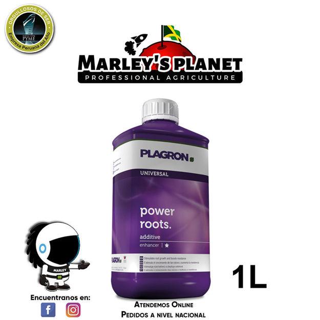 Imagen de Power Roots 1L