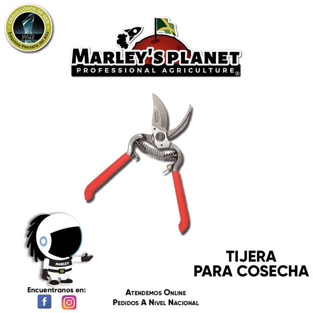 Imagen de TIJERA PARA COSECHA