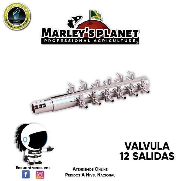 Imagen de Válvula con 12 salidas