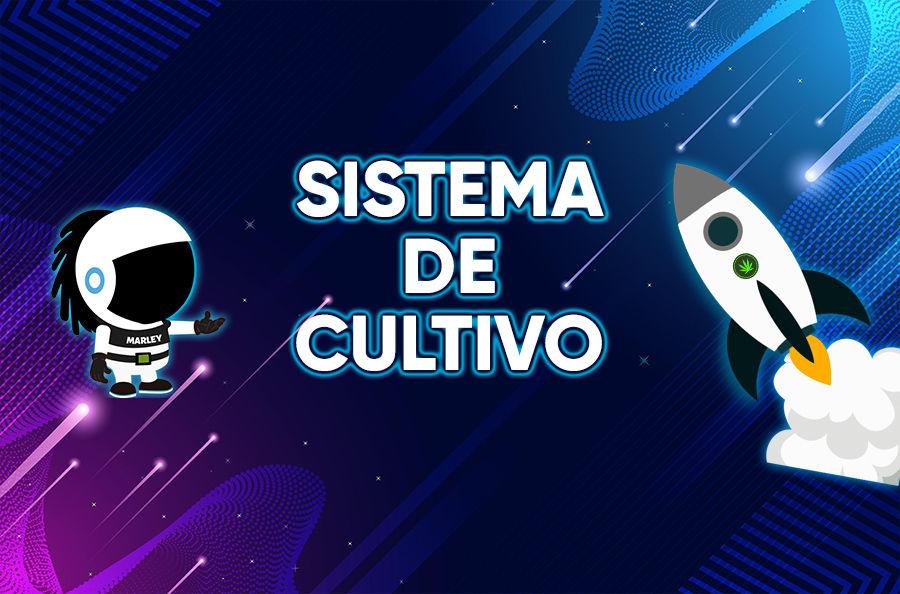 Imagen para la categoría SISTEMAS DE CULTIVO